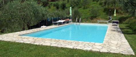 Swimming pool in Montemagno