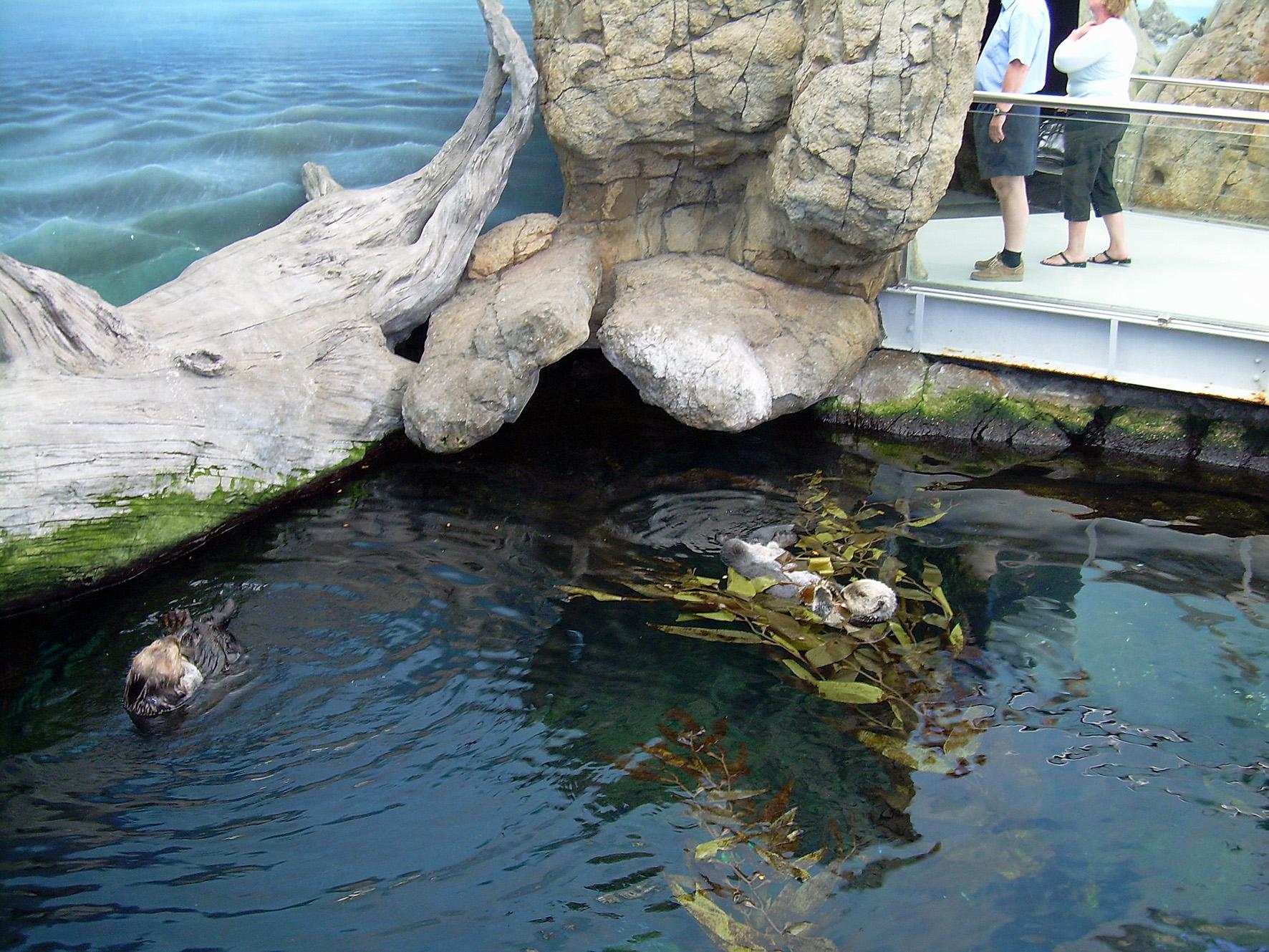 Portugal Lisbon Zoo