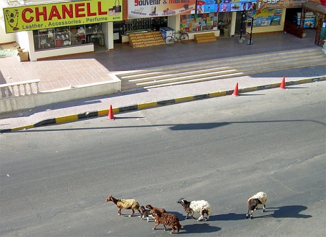 Hurghada streets