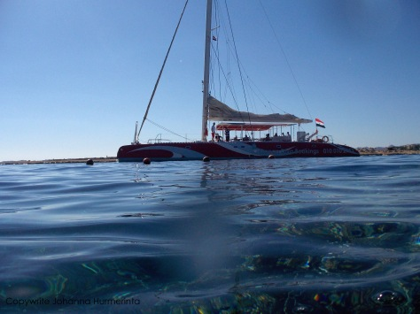Red Sea catamaran