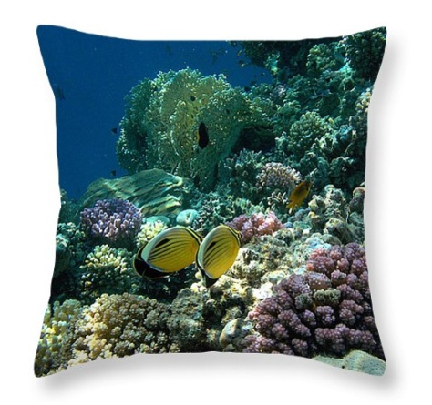 Exquisite Butterflyfish pillow