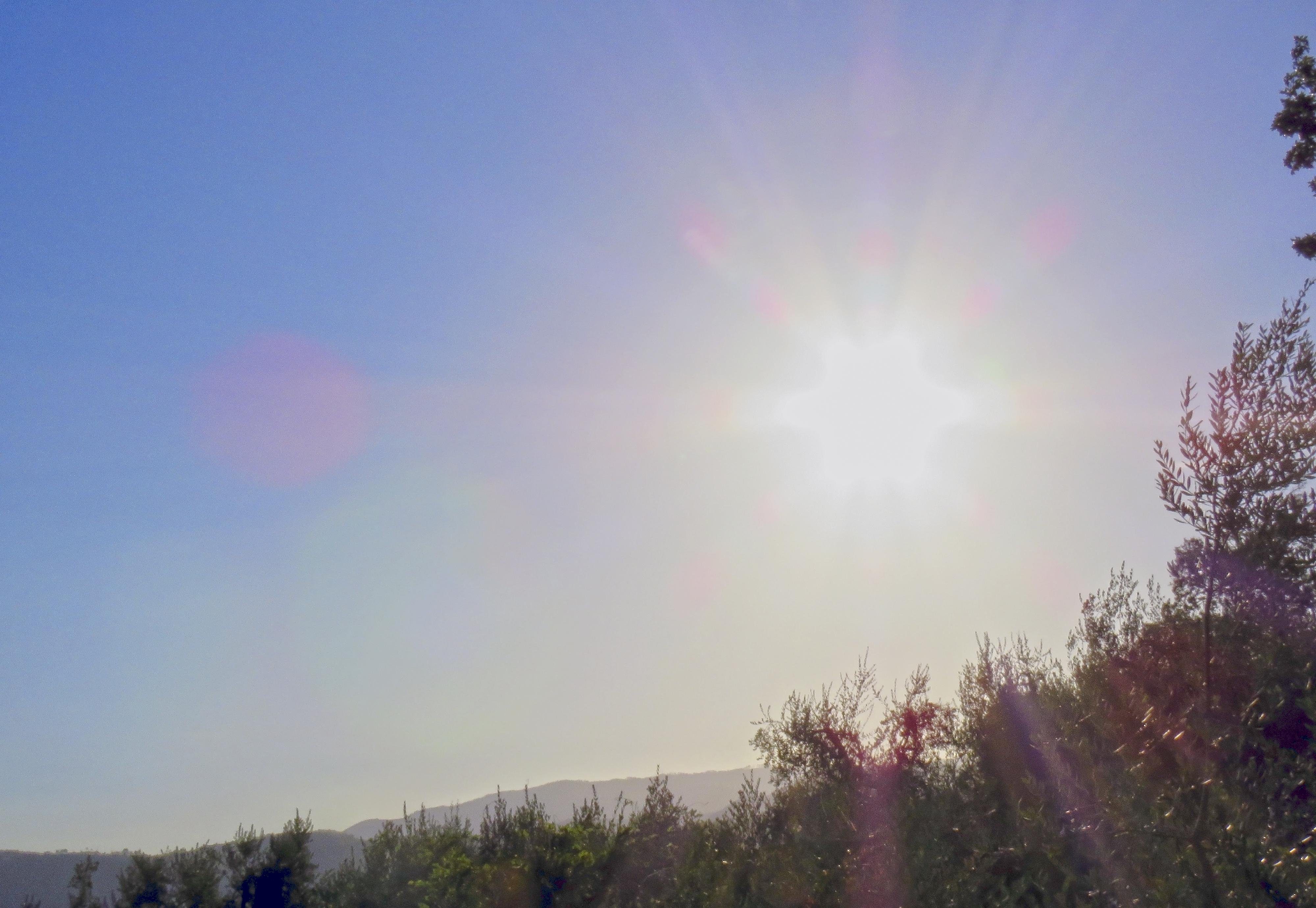 Sunny Morning Hour.jpg